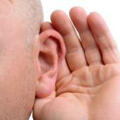 Ear. Image courtesy of Shutterstock.
