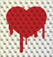 Heartbleed. Image courtesy of Shutterstock