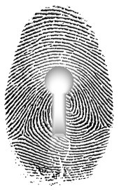 Fingerprint. Image courtesy of Shutterstock