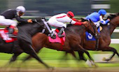 Image of horse racing courtesy of Shutterstock